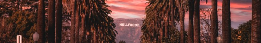 Sunset photo of Hollywood sign and palm trees